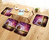 Printsonne Home Chair Set Supernatural Sky ery with Mystical Northern Solar Lights and Star Clusters Neat Machine-Washable W21.5 x L21.5/4PCS Set