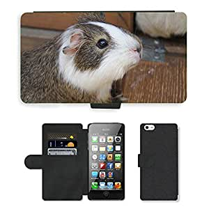 GoGoMobile Flip PU Leather Wallet Case with Credit Card Slots // M00118919 Mumps Animals Guinea Pig // Apple iPhone 5 5S 5G