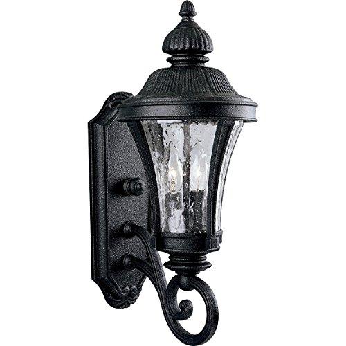 Progress Lighting P5835-71 2-Light Wall Lantern with Water Glass Panels, Gilded Iron