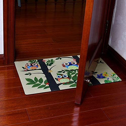 Welcome Mat for Front Door Entrance Way, 29 x 17 inch Decorative Floor Mat Owl Print Doormat with Non Slip Backing Owls Print-c