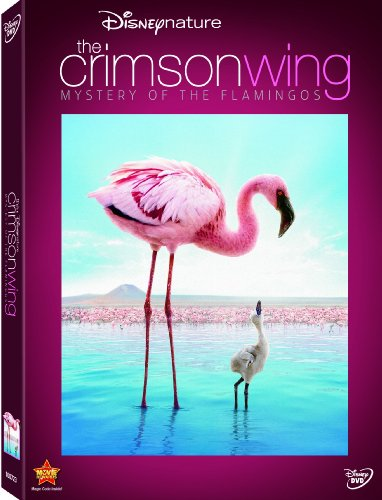 Disneynature: The Crimson Wing - Mystery of Flamingos