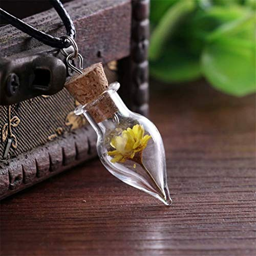 LOSOUL Drop shape dandelion Necklace, Real Dandelion Seed in Glass Globe Pendant,glass Orb Nature Pendant Dry Flower Necklace Make a Wish