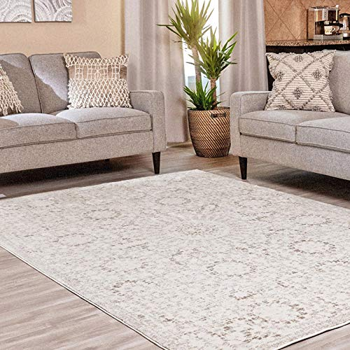 Ophanie Modern Boho Chic Area Rug Carpet, Thick Area Rugs for Living Room, Dining Room, Bedroom, Office, 6′ x 9′, Beige…