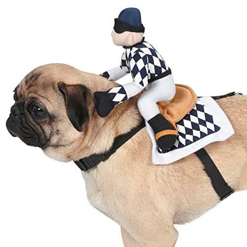 Zack and Zoe Show Jockey Saddle Dog Costume