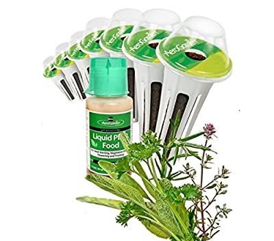 Scarborough Fair Seed kit by Aerogarden