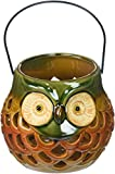 Cheap DII Thanksgiving Holiday Rustic Round Owl Lantern Tea Light Holder Ideal for Indoor Home Decor or Outdoor Lighting, Set of 2