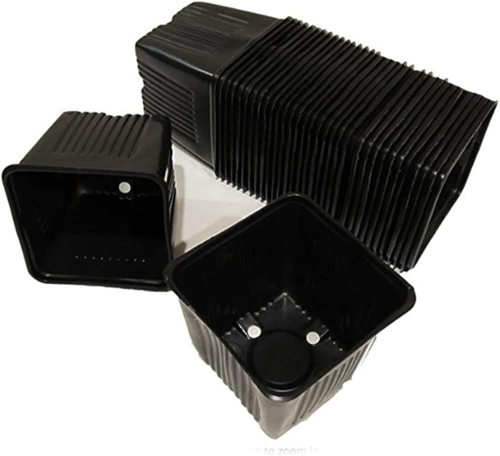 "Gage Durapot Square Plastic Nursery Pots, 3-1/2"" - Qty. 50"