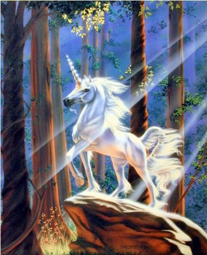 Light in the Forest Sue Dawe Unicorn Horse Wall Decor Art Print Poster (16x20) ()