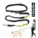 HASLE OUTFITTERS Dual Handle Hands Free Dog Leash - Reflective Shock Absorbing Bungee, Adjustable Waist Belt Dog Lead for Running, Walking, Jogging, Training,Hiking by Green