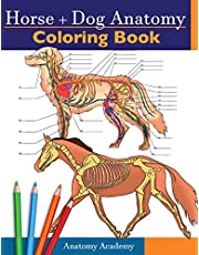 Horse + Dog Anatomy Coloring Book: 2-in-1 Compilation   Incredibly Detailed Self-Test Equine & Canine Anatomy Color workbook   Perfect Gift for Veterinary Students, Animal Lovers & Adults