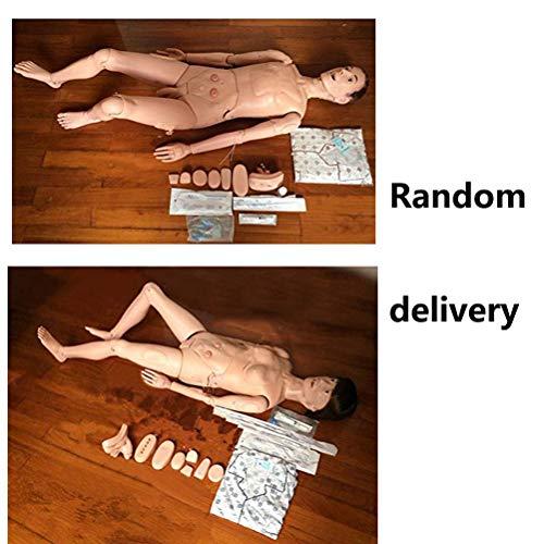 XIDAJIE Multifunctional Nursing Training Manikin Model Mannequin Patient,Random ()