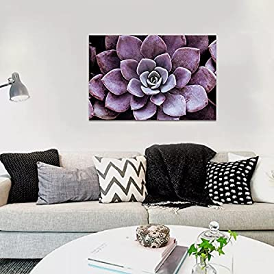 Dark Purple Succulent Close - Canvas Art