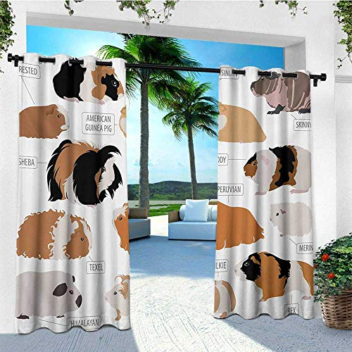 Beaded Guinea Pig - leinuoyi Guinea Pig, Outdoor Curtain Panels Set of 2, Infographic Design Classification for Types of Rodent Breeds, for Pergola W96 x L96 Inch Sand Brown Amber and Ginger