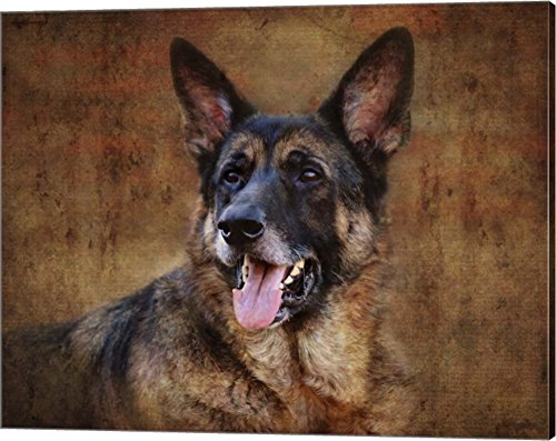 German Shepherd by Jai Johnson Canvas Art Wall Picture, Gallery Wrap, 20 x 16 inches