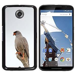 Hawk White Bird Invierno Naturaleza Gris- Metal de aluminio y de plástico duro Caja del teléfono - Negro - NEXUS 6 / X / Moto X Pro