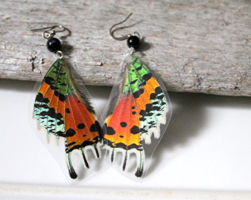sunset-moth-wing-black-crystal-earrings