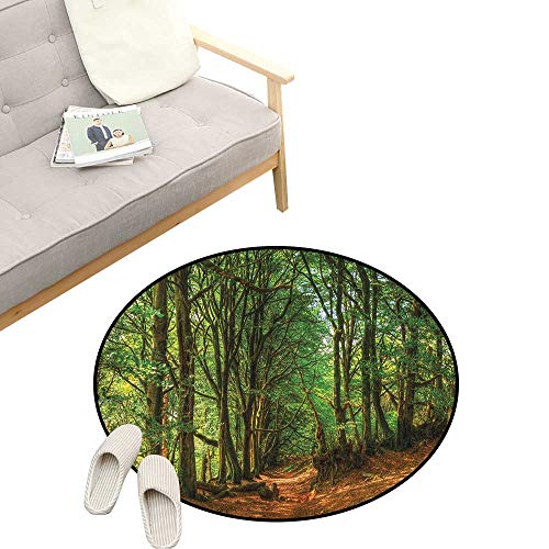 Woodland Modern Flannel Microfiber ,Woodland Scene with Trees and Pathway Foliage Trunk Greenery Outdoor Picture, Round Rug Living Room Bedroom Decor 39