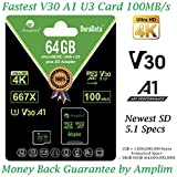 Amplim 64GB MicroSDXC UHS-I U3 V30 A1 C10 100MB/s 4K UHD & Full HD Micro SD Memory Card with Adapter, Nintendo-Switch Compatible - Green