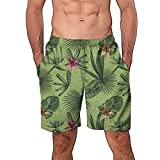 NUWFOR Men Casual 3D Graffiti Printed Beach Work Casual Men Short Trouser Shorts Pants(Green,US M Waist:29.1-33.1'')