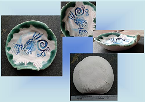 Trilobite Seaglass Mini Ring Dish Scallop Sea Shell Turquoise Teal Fine Porcelain Beach Decor Ocean Blue Sea Creatures Candy Dish (Candy Dish Shell)