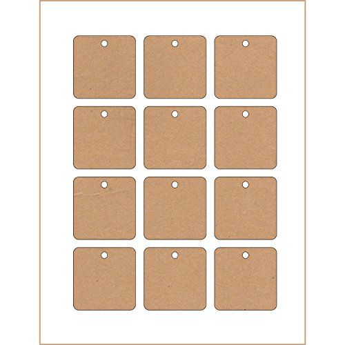 photograph about Printable Cardstock Tags named 60 Printable Cardstock Sq. Hold Tags with Holes, 2 x 2
