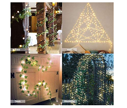 SHINEMU String Lights,Indoor/Outdoor decoration Lights,Fairy Garden Lights for Bedroom lights,Photo wall lights,Patio lights,Gate lights,Xmas lights,Commercial Lights(warm white 100 led 32.8 feet)