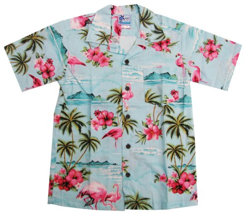 Pink Hibiscus (RJC Boys Pink Flamingo Hibiscus Shirt in Blue - 4)