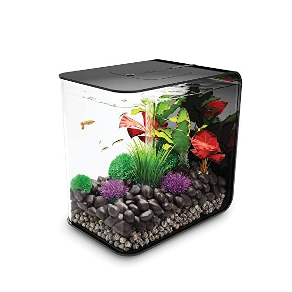 biOrb Flow 15 Aquarium with LED Light – 4 Gallon, Black