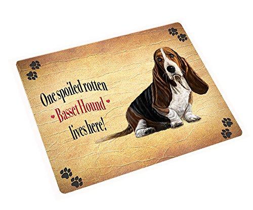 Basset Hound Spoiled Rotten Dog Art Portrait Print Woven Throw Sherpa Plush Fleece Blanket (50x60 Sherpa) (Hound Basset Portrait)
