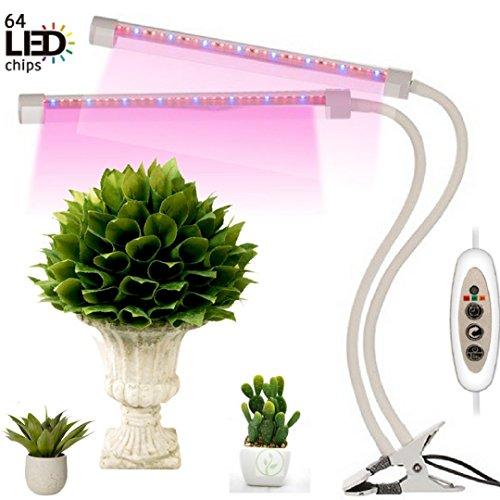 Led Light Herb Garden in Florida - 9