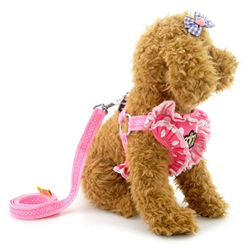 (Zunea Princess Walking Vest Harness and Leash Set for Small Dogs Soft Mesh Padded with Cute Crown and Polka Dot Pet Cat Harness, for Photo Apparel, Holiday/Party/Daily Wear, Wedding Dress - (Pink, S))