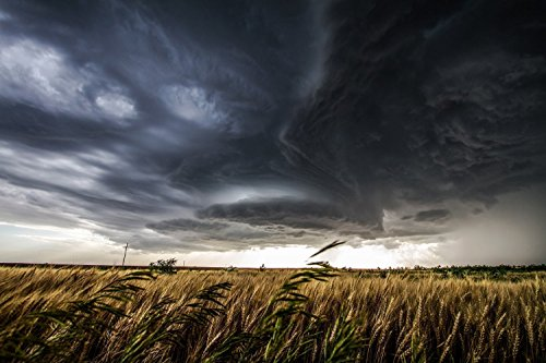 Thunderstorm in Kansas Photography Art Print - Picture of Sculpted Thunderstorm Over Wheat Field Cloud Decor Artwork for Home Decoration 5x7 to (Sculpted Poster)