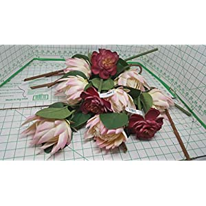 Ashland 7 Pink Tipped 18 in. Protea MSRP 10.99 ea. and 3 Cushion Flowers 12 inch MSRP 7.99ea = $100.90 Total Value 116