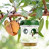 Wasp Traps Outdoor Hanging - Solar Powered Wasp
