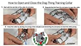 Dog-Thing by Talents10 - Dog Training Prong Collar
