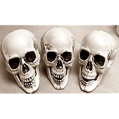 HAPPY DEALS ~ Halloween Skeleton Skulls - 3 PC - 5 INCH with Moving JAW: Toys & Games
