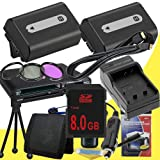 TWO NPFH50 Lithium Ion Replacement Batteries w/Charger + 8GB SDHC Memory Card + Mini HDMI + 3 Piece Filter Kit + Mini HDMI + USB SD Memory Card Reader /Wallet + Deluxe Starter Kit for Sony DCRDVD508, DCRDVD408, DCRDVD308, DCRDVD108, DCRDVD505, DCRDVD405,