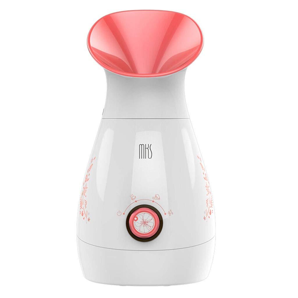 美顔器用スチームスプレー顔用保湿保湿肌きれいな毛穴家庭用ナノスプレー水和機器缶詰果物と野菜 B07V5MGL2T