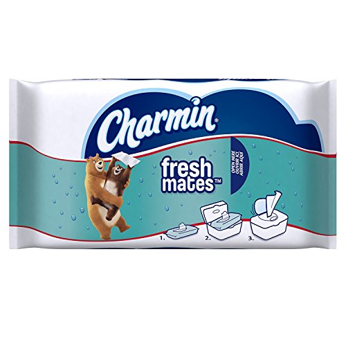 Price comparison product image Charmin Freshmates Flushable Wet Wipes, 40 Count (Pack of 12)