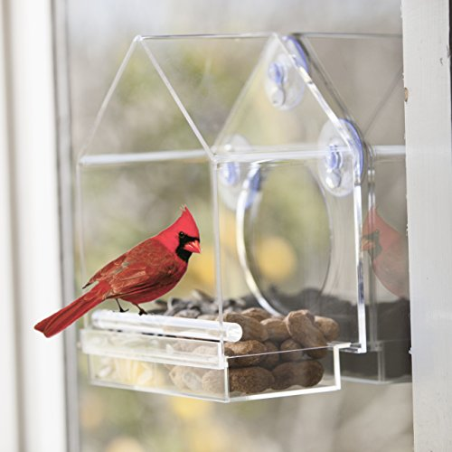 Review Window Bird Feeder by