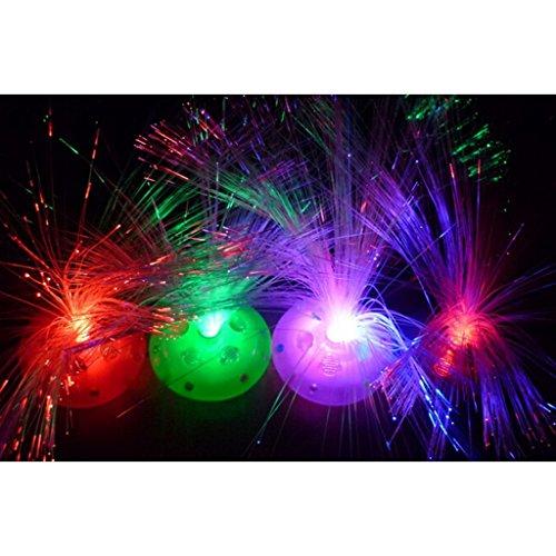 (HuntGold 1X Cool LED Color Changing Fiber Optic Night Light Lamp For Kids Bedroom Decoration(Random Color))