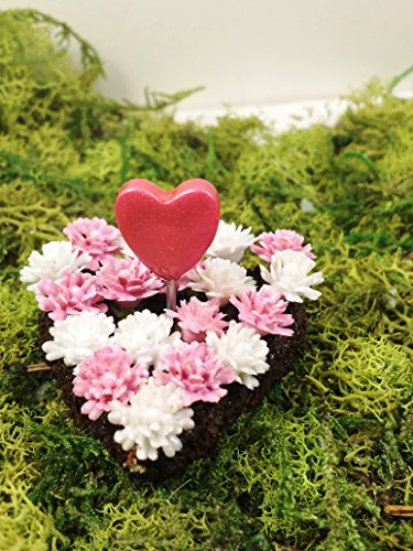 Miniature heart shaped flower bed. Fairy garden, dollhouse accessories, terrarium decor. Pink and white. Valentines Day miniature.