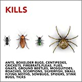 Raid Ant & Roach Barrier Spray, Killer for Listed