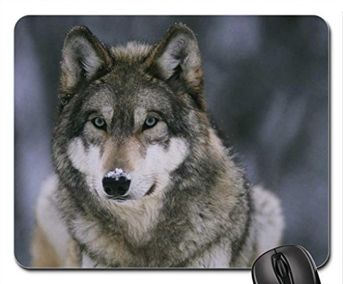 Snow wolf Mouse Pad, Mousepad - Buy Online in Oman