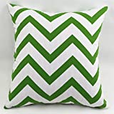 TAOSON Chevron Zig Zag Cotton Canvas Pillow Sofa Throw White Printed Cushion Cover Pillow Case with Hidden Zipper Closure Only Cover No Insert 25x 25 Inch 65x65cm-Green