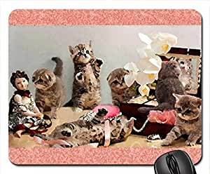 Playing fluffy kittens Mouse Pad, Mousepad (Cats Mouse Pad, 10.2 x 8.3 x 0.12 inches)