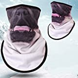 Shadow Face Mask, Winter Sports Equipment Triangle Towel Motorcycle Bicycle Cycling Headscarf Half Face Mask Windproof Warm Ski Mask SD-018 (Color : 09)