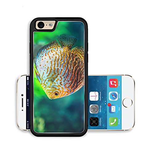 liili-premium-apple-iphone-6-iphone-6s-aluminum-backplate-bumper-snap-case-symphysodon-discus-in-an-