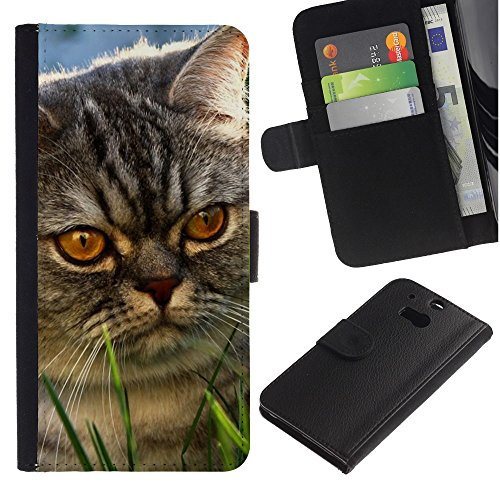 Billetera de Cuero Caso Titular de la tarjeta Carcasa Funda para HTC One M8 / Yellow Eyes Cat Mongrel Grey Angry / STRONG