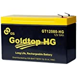 Genuine FiOS OEM Approved Replacement Battery (3 Year Warranty) by GS Battery - GT12080-HG - Premium Replacement for PX12072-HG